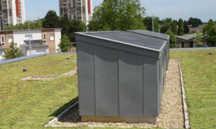 Dazy Saint-Fons et Replonges - Entreprise de toitures végétalisées